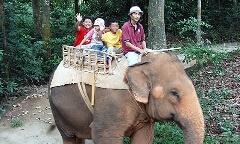 マラッカの動物園